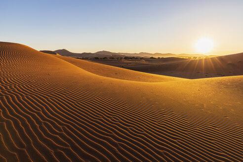 Africa, Namibia, Namib desert, Naukluft National Park, sand dunes in the morning light against the morning sun - FOF10109