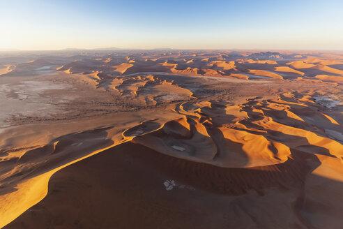 Africa, Namibia, Namib desert, Namib-Naukluft National Park, Aerial view of desert dunes in the morning light - FOF10127