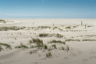 Germany, Schleswig-Holstein, Sankt Peter-Ording, sandy beach - UMF00843
