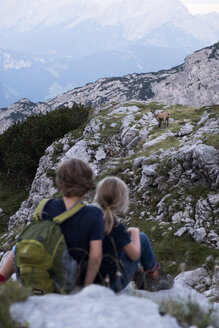 Austria, Salzburg State, Loferer Steinberge, brother and sister on a hiking trip in the mountains meeting an ibex - HAMF00363