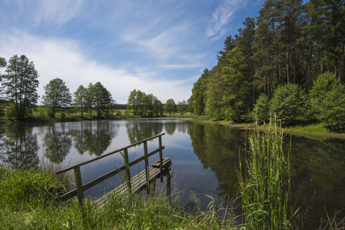 Germany, Upper Palatinate, Russweiher - FDF00238