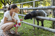 Mother and little daughter feeding a sheep behind fence - DIGF05009