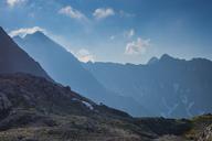Germany, Bavaria, Allgaeu, Allgaeu Alps, Alpine ibex - WGF01230