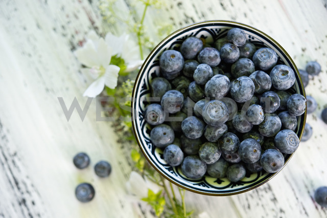 Bowl of blueberries - ASF06215