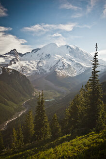 The northest face of Mount Ranier and the Winthrop Glacier in Mount Ranier National Park - AURF01789