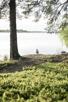 Finland, Kuopio, little girl at a lake in the countryside - PSIF00030