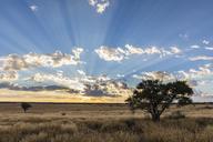 Africa, Botswana, Kgalagadi Transfrontier Park, Mabuasehube Game Reserve, Mabuasehube Pan at sunrise - FOF10203