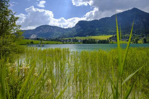 ustria, Tyrol, Vorderthiersee, View of Thiersee Lake - LBF02020