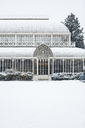 Italy, Florence, snow-covered old greenhouse - MGI00205