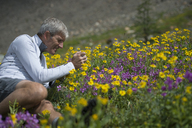 A man happily takes photos of wildflowers. - AURF02022