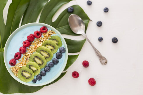 Smoothie bowl with blueberries, raspberries, kiwi and chopped hazelnuts - JUNF01102