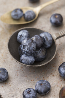 Old spoon with blueberries - JUNF01105