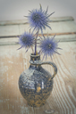 Blue Thistle in a vase - JUNF01108