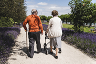 Senior couple walking in park, woman using wheeled walker - UUF14946