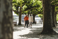 Senior couple walking in park, rear view - UUF14958