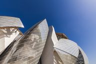 France, Paris, Bois de Boulogne, Fondation Louis Vuitton, Art Museum, Architect Frank Gehry - WD04821