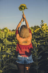 Young woman standing in a field lifting a sunflower - ACPF00297