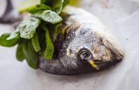 Sea bream with fresh herbs - RAMAF00009