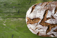 Loaf of brown bread on wood, partial view - RAMAF00027