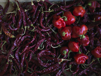 Two sorts of red peppers - RAMAF00057