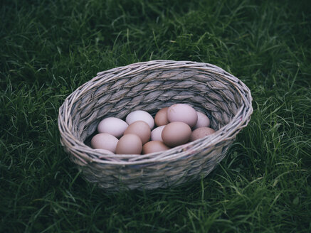 Basket of brown eggs on a meadow - RAMAF00069