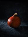 Hokkaido pumpkin in front of dark background - RAMAF00096