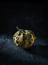 Tiny decorative gourd in front of dark background - RAMAF00099