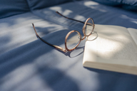 Eyeglasses and book lying on couch - KNSF04628