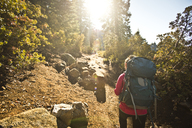A backpacker hikes up a wooded trail in Yosemite National Park. - AURF02906
