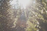 Christmas Tree - AURF03074