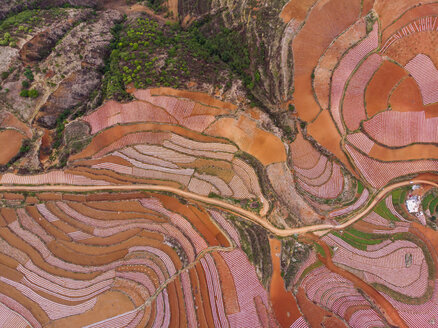 China, Yunnan province, Dongchuan, Red Land - KKAF01534