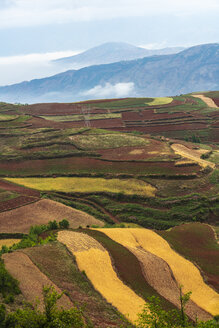 China, Yunnan province, Dongchuan, Red Land - KKAF01540