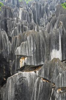 China, Shilin, Stone forest - KKAF01546