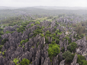 China, Shilin, Stone forest - KKAF01549