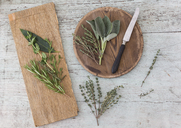 Fresh Provencal herbs, knife and   wooden boards - JUNF01177