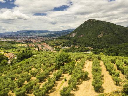 Italy, Tuscany, Monsummano Terme - JUNF01192