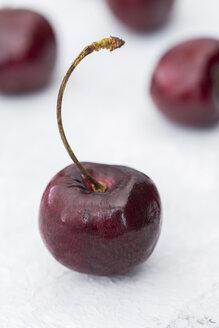 Cherry on white ground - JUNF01220