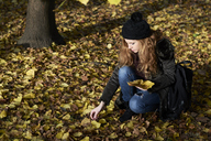 Woman collecting autumn leaves in a park - IGGF00523