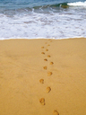 Spain, Canaray Islands, Fuerteventura, footprints on beach - WWF04406