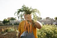 Unrecognizable senior man holding bunch of harvested carrots - JRFF01839