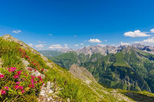 Germany, Bavaria, Allgaeu, Allgaeu Alps, panoramic view of Allgaeu main ridge from Krumbacher Hoehenweg - WGF01238