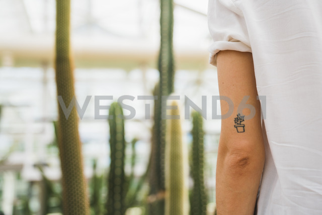 Cactus tattoo on young woman's arm - KKAF01655