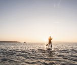 Young woman stand up paddle surfing at sunset - UUF15092