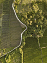Indonesia, Bali, Aerial view of rice fields - KNTF01246