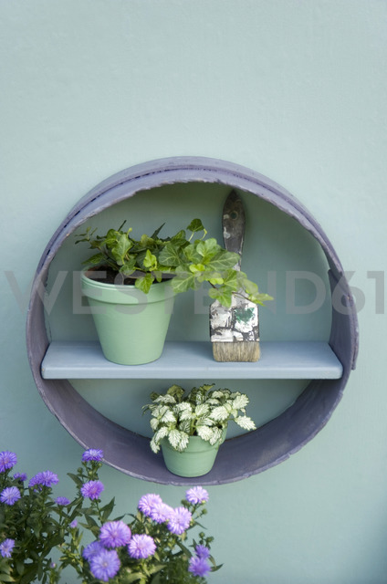 Flower decoration, flour sifter, shelf, brush, flower pots with ivy and aster - GISF00379