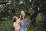 Mother holding baby in garden looking at apple tree - KMKF00543