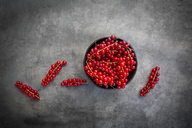 Bowl of red currants - LVF07428