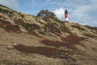 Germany, Schleswig-Holstein, Sylt, Hörnum, lighthouse - KEBF00942