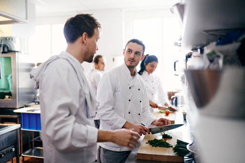 Young chef talking with colleague while chopping vegetable in commercial kitchen - MASF08706