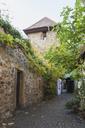 Germany, Rhineland-Palatinate, Freinsheim, Historic city wall - GWF05656
